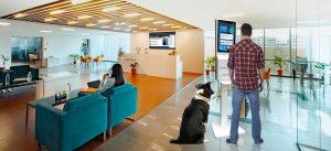 Residential Digital Signage and Best Condo Amenity